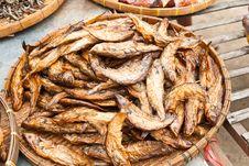 Dry Sheatfish Stock Image