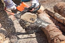 Free The Chainsaw Cutting The Log Of Wood Royalty Free Stock Images - 19631239