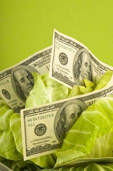 Free Creative Money Food Stock Photos - 19631473