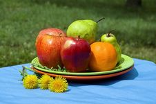 Free Fruits In The Garden Royalty Free Stock Images - 19631479