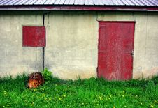 Free Abandoned Shed Royalty Free Stock Photos - 19631968