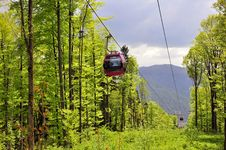 Free Forest Cable Car Royalty Free Stock Image - 19632036