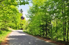 Free Chair Lift In Forest Royalty Free Stock Image - 19632086