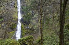 Waterfall In A Green Forest Stock Images