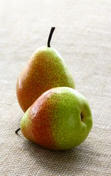 Free Pears Stock Image - 19634971