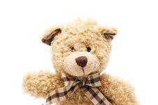 Free Plush Bear Stock Photography - 19635322