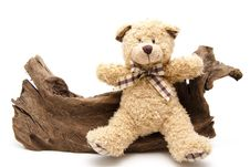 Free Plush Bear Stock Image - 19635341