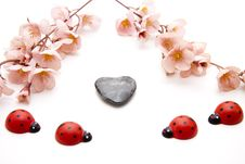 Free Ladybird With Stone Heart Royalty Free Stock Image - 19635376