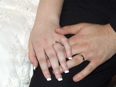 Wedding Rings Closeup Stock Image