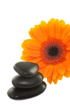 Spa Stones And Flower. Royalty Free Stock Photo