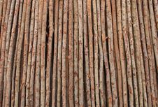 Free Fresh Cut Logs Stock Photo - 19639600