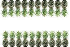 Free Pineapple Stock Photos - 19639823