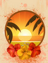 Free Hibiscus Flowers And Tropical Border Stock Photography - 19644452