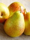 Free Pears Royalty Free Stock Images - 19648269