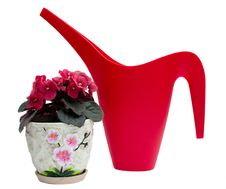 Red Watering Can And Flower In A Pot