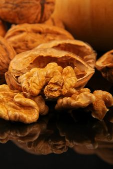 Free Walnuts Royalty Free Stock Photo - 19641125