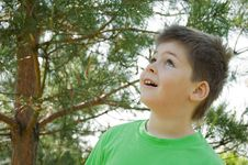 The Boy In The Woods. Looks Up In Surprise Royalty Free Stock Photo