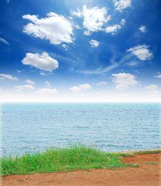 Free Green Grass Sea Sand Sun Beach Royalty Free Stock Photo - 19642045