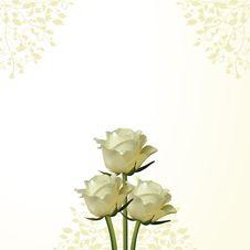 Free Rose And Flourish Background Royalty Free Stock Images - 19644179