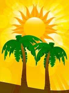 Free Palm Trees And Summer Sun Stock Photos - 19644243