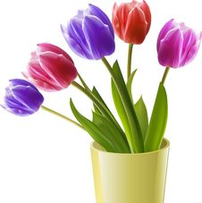Free Tulips In A Yellow Vase Stock Images - 19644454