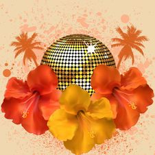 Free Tropical Disco Ball Stock Images - 19644524