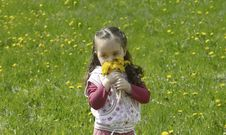 Free Little Girl Collect Flowers Royalty Free Stock Images - 19644989