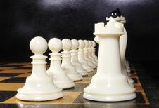 Free White Chess On A Chessboard Stock Images - 19645474