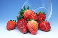 Free Strawberries Stock Photos - 19646993