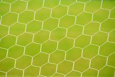 Free Grass In Football Ground Stock Photos - 19648103