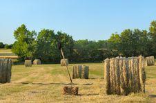 Free Harvesting Hay Royalty Free Stock Image - 19649536