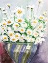 Free White Daisy Watercolors Royalty Free Stock Photography - 19653247