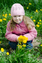 Free Portrait Of The Little Girl With Dandelions Stock Images - 19654034