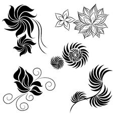 Free Vector Set Of Flower Design Elements Royalty Free Stock Image - 19651036