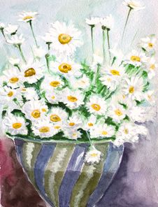 Free White Daisy Watercolors Royalty Free Stock Photography - 19653247