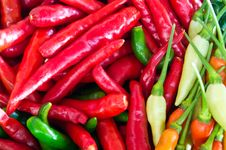 Free Chillies Royalty Free Stock Images - 19653379