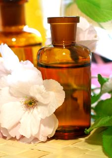 Free Spa Composition Of Bottles And Flowers Royalty Free Stock Photos - 19653858
