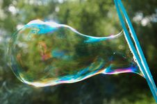 Free Large Soap Bubble Royalty Free Stock Photo - 19658925