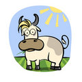 Free Taurus Zodiac Stock Photo - 19660200