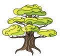 Free Stylized Tree. Royalty Free Stock Photography - 19663327