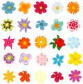 Free Colorful Spring Flowers Stock Photos - 19664523