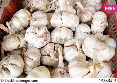 Free Garlic Stock Photos - 19665413