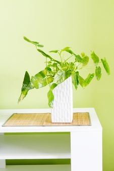 Free Ornamental Vase Stock Photo - 19661250