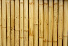 Free Bamboo Background Royalty Free Stock Image - 19661886