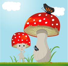 Free Mushroom Whit Butterfy Royalty Free Stock Image - 19662806