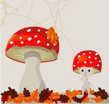 Free Mushroom Royalty Free Stock Photography - 19662807