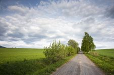 Free Field Road And Sky Royalty Free Stock Images - 19664289