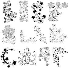 Free Black And White Flowers  Set Royalty Free Stock Photo - 19664315
