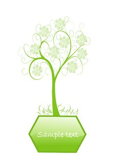 Ecology Green Tree Stock Photography