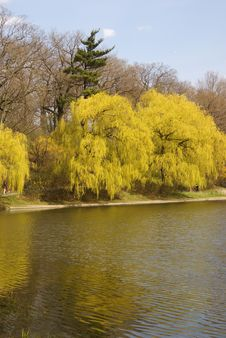 Free Spring Colours In High Park Stock Photos - 19669093